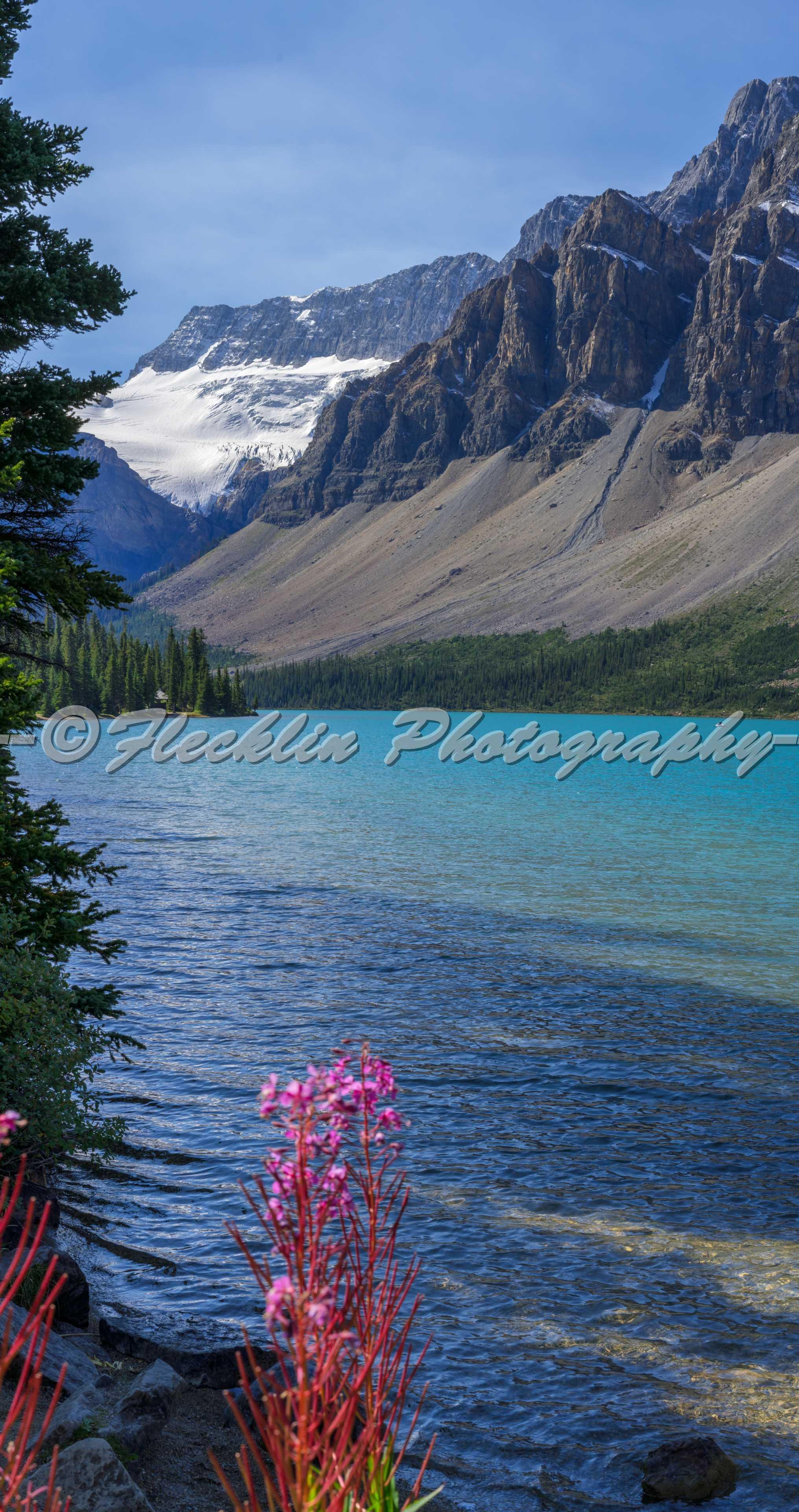 Bow Lake Banff National Park stock photo  iStock