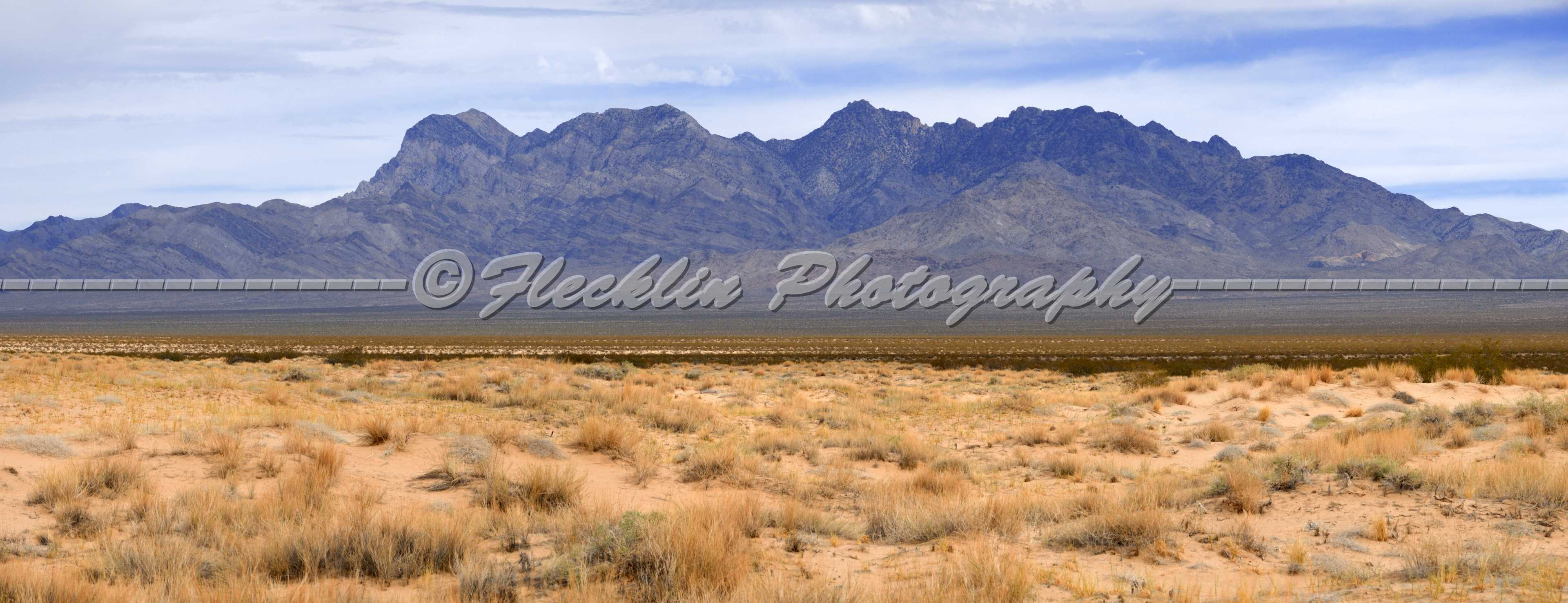 download related keywords suggestions mojave desert animals long