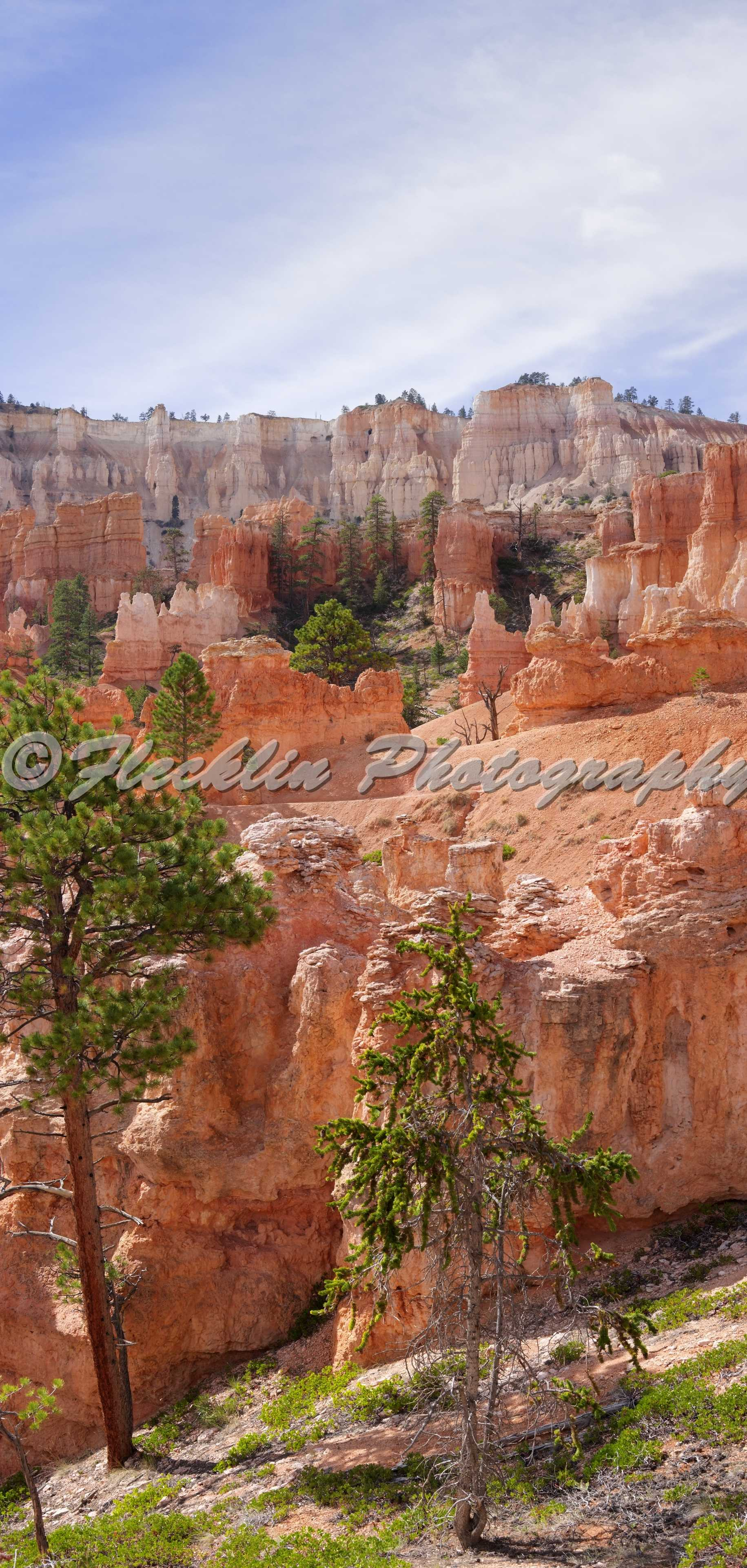bryce canyon ut moments - photo #21