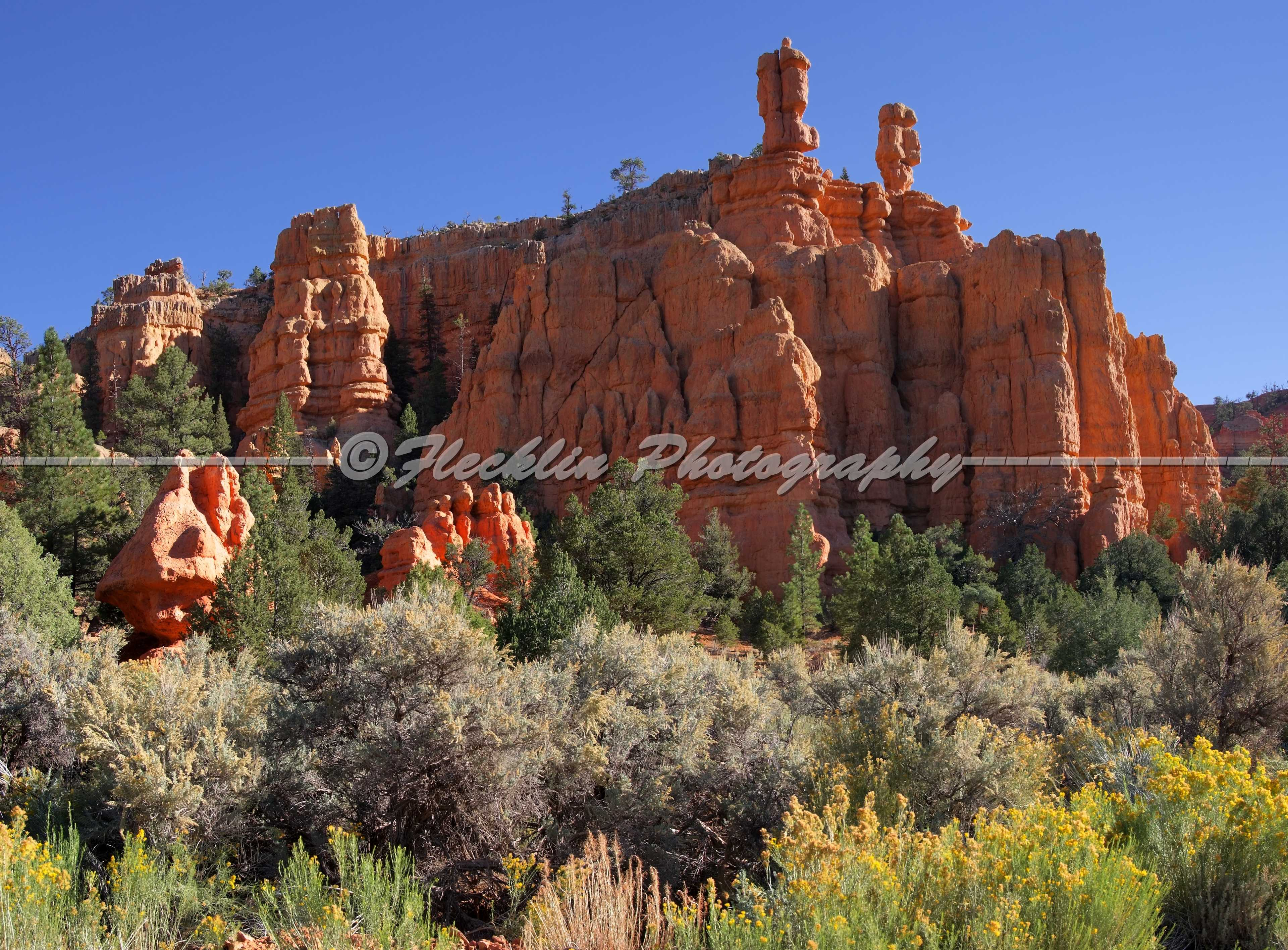 bryce canyon ut moments - photo #34
