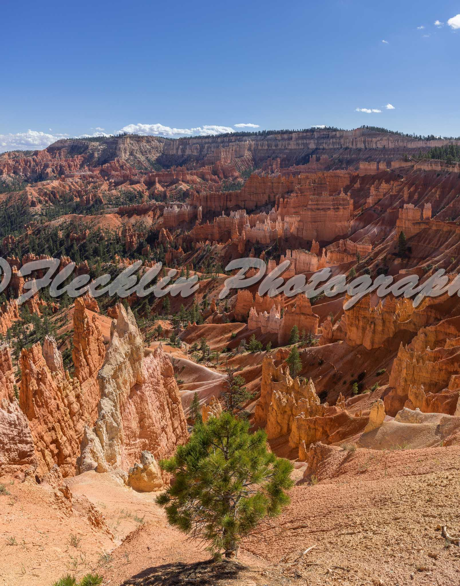 bryce canyon ut moments - photo #43